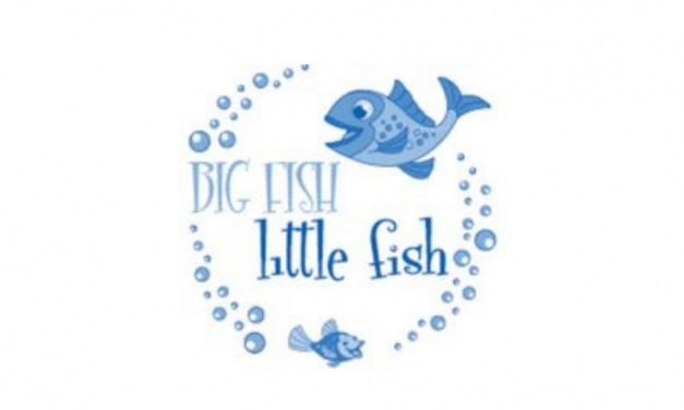 Big Fish Little Fish Swim School
